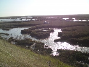 Suffolk - het landschap van W.G. 'Max' Sebald