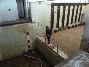 National Trust gids in de zesde bunker