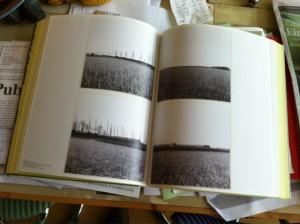 Reinjan Mulder: Dinteloord. Uit: Modern Times - Photography of the 20th Century (2014)